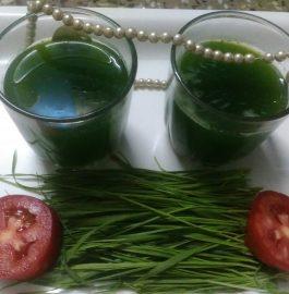 Wheat Grass Shots Recipe