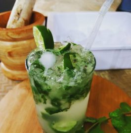 Fresh Lemon Mint Mojito Recipe